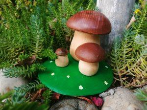 Set Ciuperci Bumbu Toys